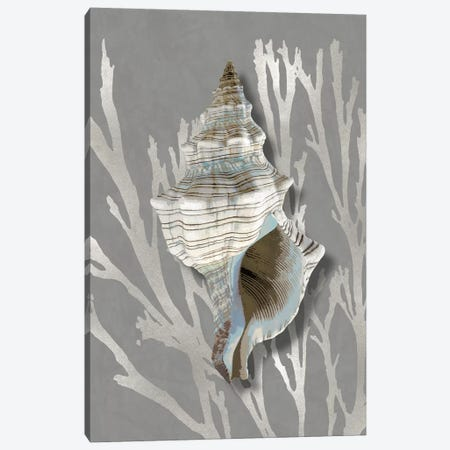 Shell Coral Silver on Gray III Canvas Print #KEL88} by Caroline Kelly Canvas Wall Art