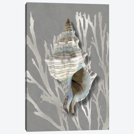 Shell Coral Silver on Gray III Canvas Print #KEL88} by Caroline Kelly Canvas Wall Art
