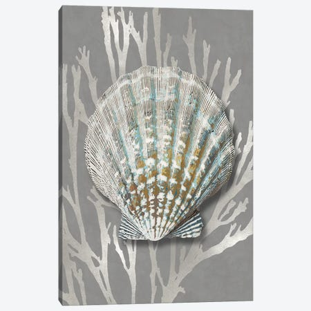 Shell Coral Silver on Gray IV Canvas Print #KEL89} by Caroline Kelly Canvas Artwork