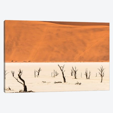 Dead acacia trees in Deadvlei, Sossusvlei, Namib-Naukluft National Park, southern Narim Desert Canvas Print #KES63} by Keren Su Canvas Art Print