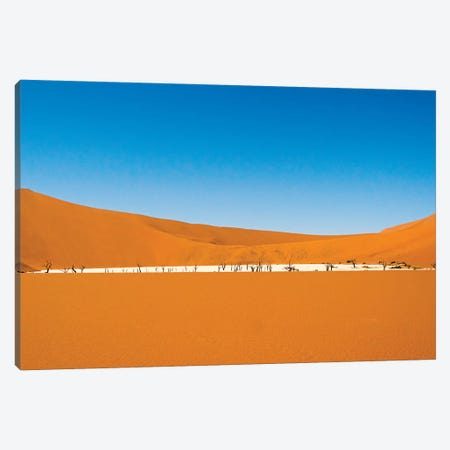 Dead acacia trees in Deadvlei, Sossusvlei, Namib-Naukluft National Park, southern Narim Desert Canvas Print #KES65} by Keren Su Canvas Art