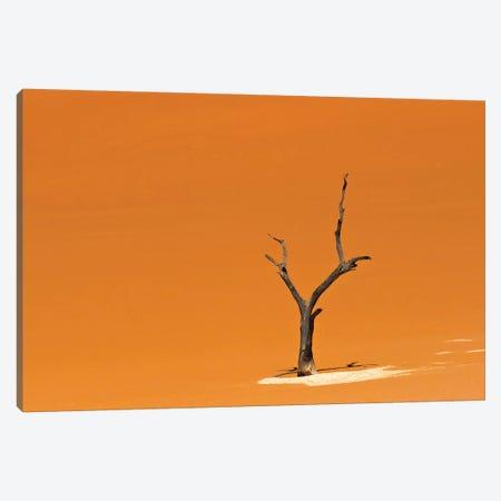 Dead acacia trees in Deadvlei, Sossusvlei, Namib-Naukluft National Park, southern Narim Desert Canvas Print #KES66} by Keren Su Canvas Wall Art