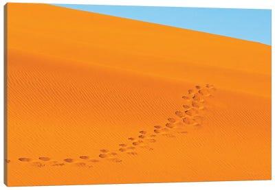 Footprints on red sand dune in southern Namib Desert. Sossusvlei, Namib-Naukluft NP, Namibia Canvas Art Print