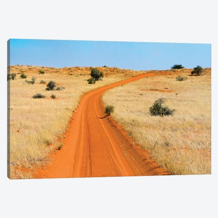 Red sand road in Kgalagadi Transfrontier Park, South Africa Canvas Print #KES90} by Keren Su Canvas Artwork