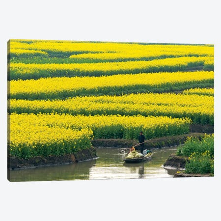 Rowing boat on river through Thousand-Islet canola flower fields, Xinghua, Jiangsu Province, China Canvas Print #KES92} by Keren Su Canvas Artwork