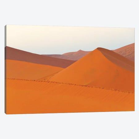 Tourists hiking on sand Dune 45 in southern Namib Desert. Sossusvlei, Namib-Naukluft NP, Namibia Canvas Print #KES98} by Keren Su Canvas Artwork