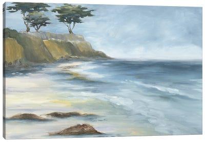 Beach Cypress Canvas Art Print