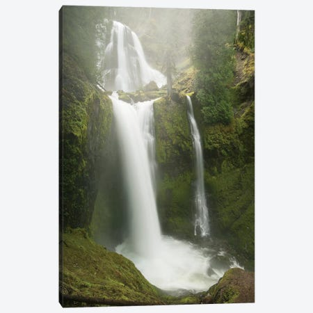 Falls Creek Falls, Gifford Pinchot National Forest, Washington Canvas Print #KEV3} by Kevin Schafer Canvas Wall Art
