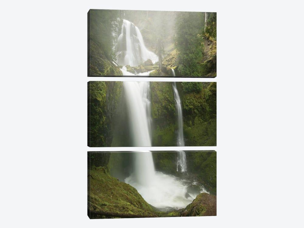 Falls Creek Falls, Gifford Pinchot National Forest, Washington by Kevin Schafer 3-piece Art Print