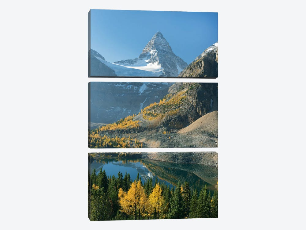 Larch Trees In Autumn Below Mount Assiniboine With Sunburst Lake, Mount Assiniboine Provincial Park, British Columbia, Canada by Kevin Schafer 3-piece Canvas Wall Art