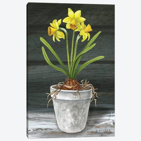 Farmhouse Garden I-Daffodils Canvas Print #KEW28} by Kelsey Wilson Canvas Art Print