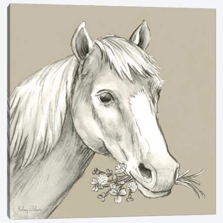 Watercolor Pencil Farm Color III-Horse Canvas Print #KEW37} by Kelsey Wilson Art Print