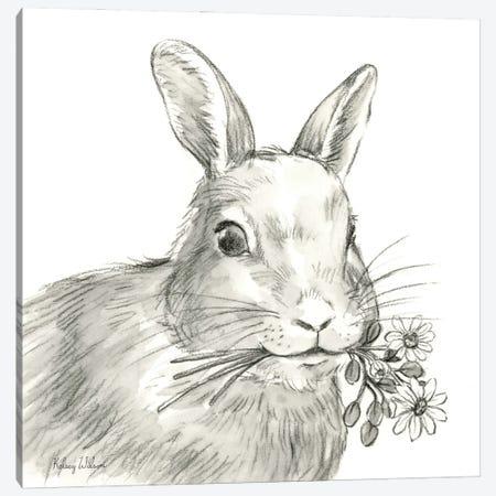 Watercolor Pencil Farm V-Rabbit Canvas Print #KEW55} by Kelsey Wilson Canvas Art Print