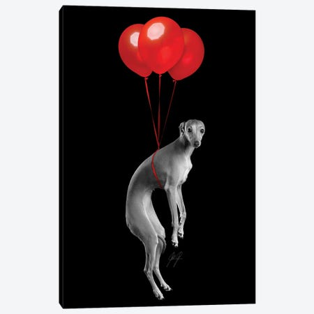 Party Dog I Canvas Print #KFD103} by Kathrin Federer Canvas Artwork