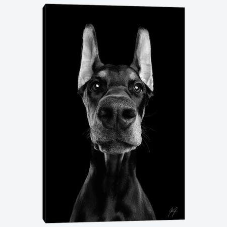 What's Up? II Canvas Print #KFD113} by Kathrin Federer Canvas Art Print