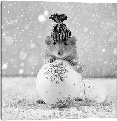 Winter Rat Canvas Art Print