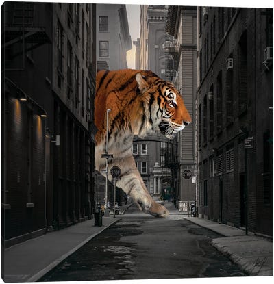 Tiger In NY I Canvas Art Print