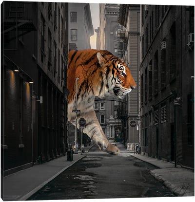 Tiger In NY I Canvas Art Print