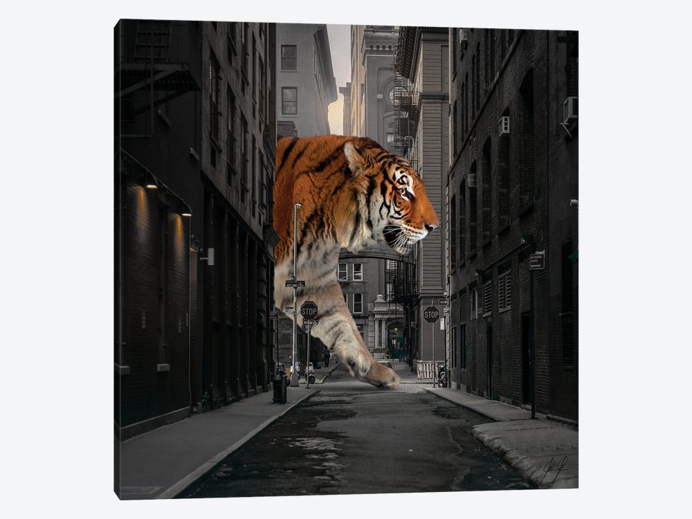 Tiger In NY I by Kathrin Federer 1-piece Canvas Wall Art