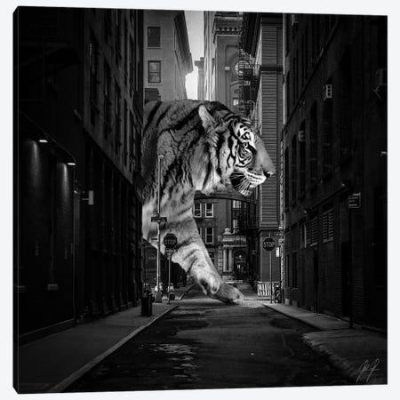 Tiger In NY II Canvas Print #KFD124} by Kathrin Federer Art Print