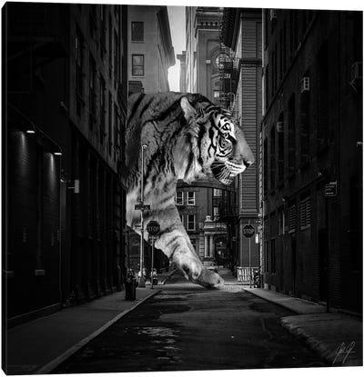 Tiger In NY II Canvas Art Print