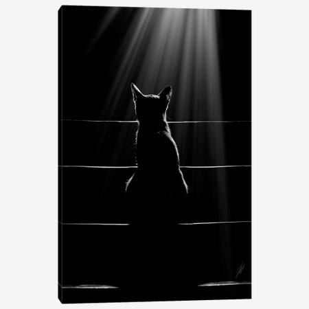 Cat Language Canvas Print #KFD136} by Kathrin Federer Canvas Wall Art