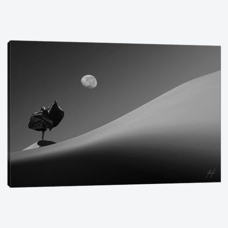 Desert On Dance Canvas Print #KFD13} by Kathrin Federer Canvas Art Print