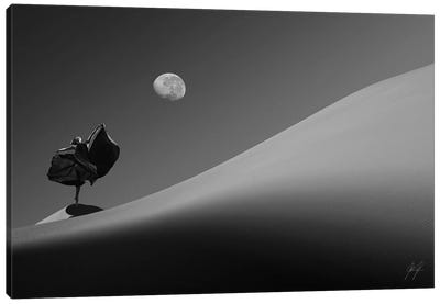 Desert On Dance Canvas Art Print