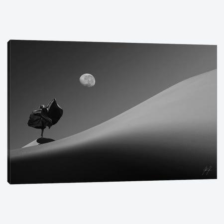 Desert On Dance Canvas Print #KFD13} by Kathrin Federer Canvas Art Print