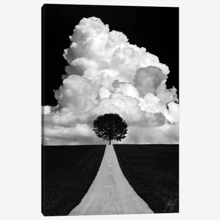 Double Tree Canvas Print #KFD14} by Kathrin Federer Canvas Art
