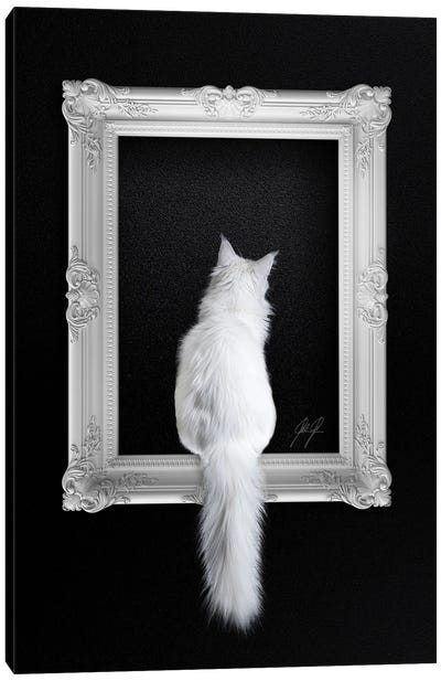 Cat In Frame Canvas Art Print