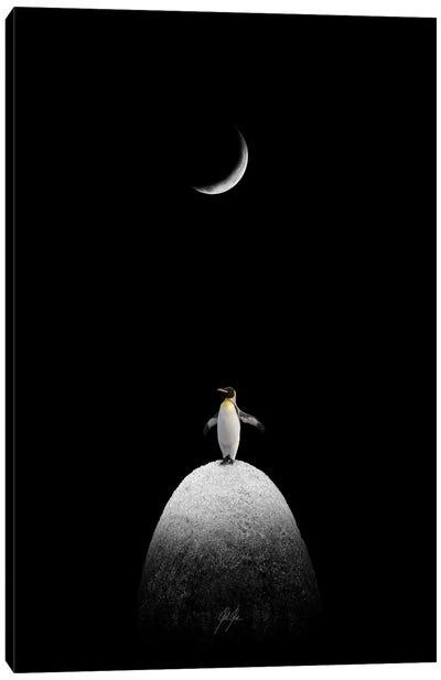 The Majestic Penguin Canvas Art Print