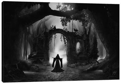 Fairy Portal Canvas Art Print