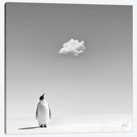A Cooling In The Scorching Heat Canvas Print #KFD1} by Kathrin Federer Canvas Artwork