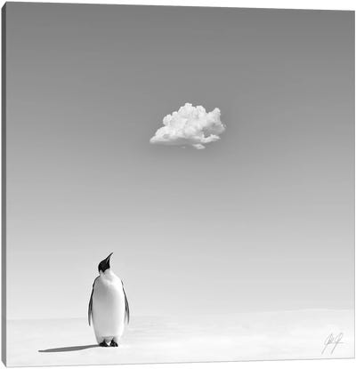 A Cooling In The Scorching Heat Canvas Art Print