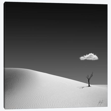 Frozen Canvas Print #KFD25} by Kathrin Federer Canvas Art Print