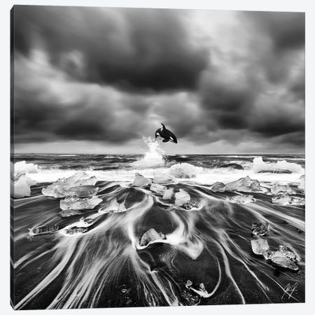 Ice Whale I Canvas Print #KFD26} by Kathrin Federer Canvas Print