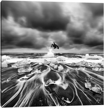 Ice Whale I Canvas Art Print