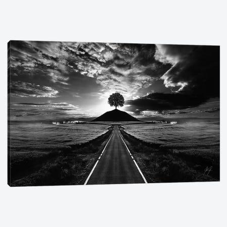 Monument Tree Canvas Print #KFD33} by Kathrin Federer Art Print