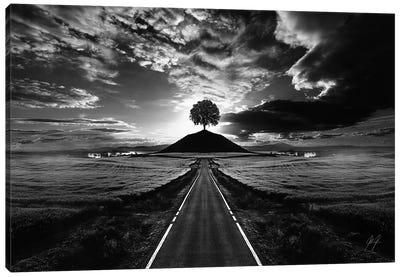 Monument Tree Canvas Art Print