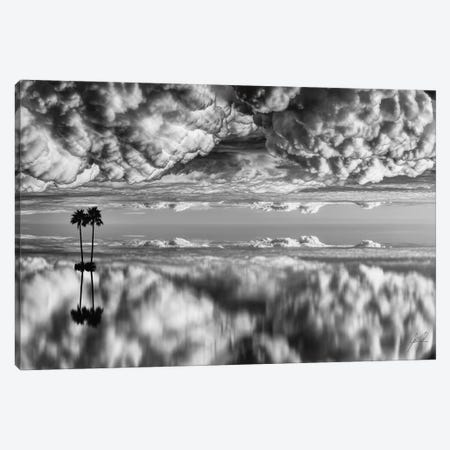 Palm On Cotton Wool Canvas Print #KFD37} by Kathrin Federer Canvas Wall Art