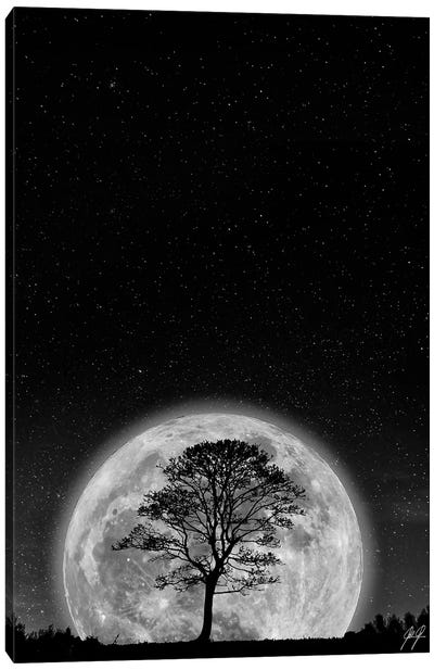 Supermoon Canvas Art Print