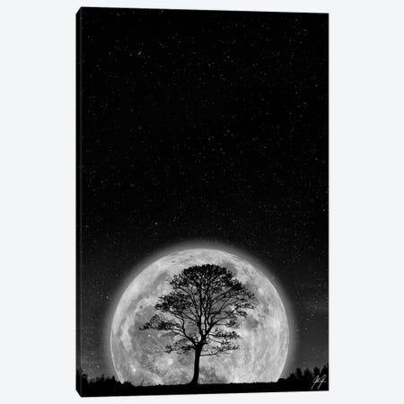 Supermoon Canvas Print #KFD45} by Kathrin Federer Art Print