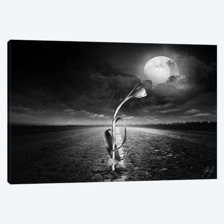 The Power Of Mother Nature Canvas Print #KFD49} by Kathrin Federer Canvas Wall Art