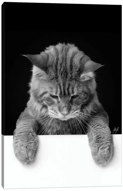 Cute Cat I Canvas Art Print