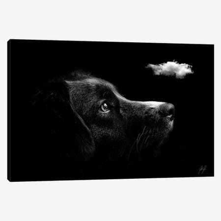 Discovering I Canvas Print #KFD61} by Kathrin Federer Canvas Art
