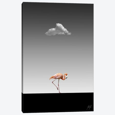 Flamingo Catwalk II Canvas Print #KFD65} by Kathrin Federer Canvas Print