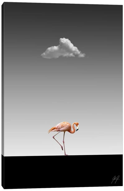 Flamingo Catwalk II Canvas Art Print