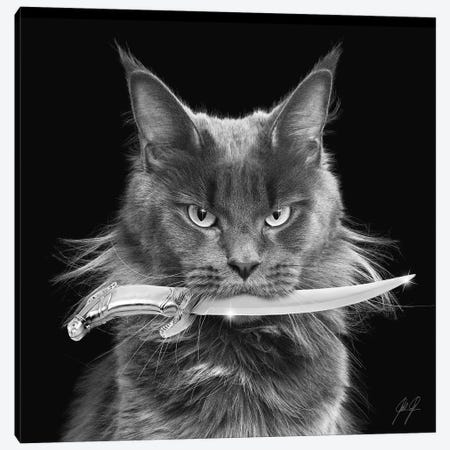 Killer Cat I Canvas Print #KFD83} by Kathrin Federer Canvas Wall Art