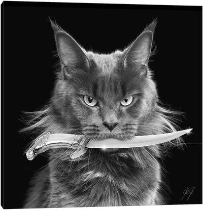 Killer Cat I Canvas Art Print